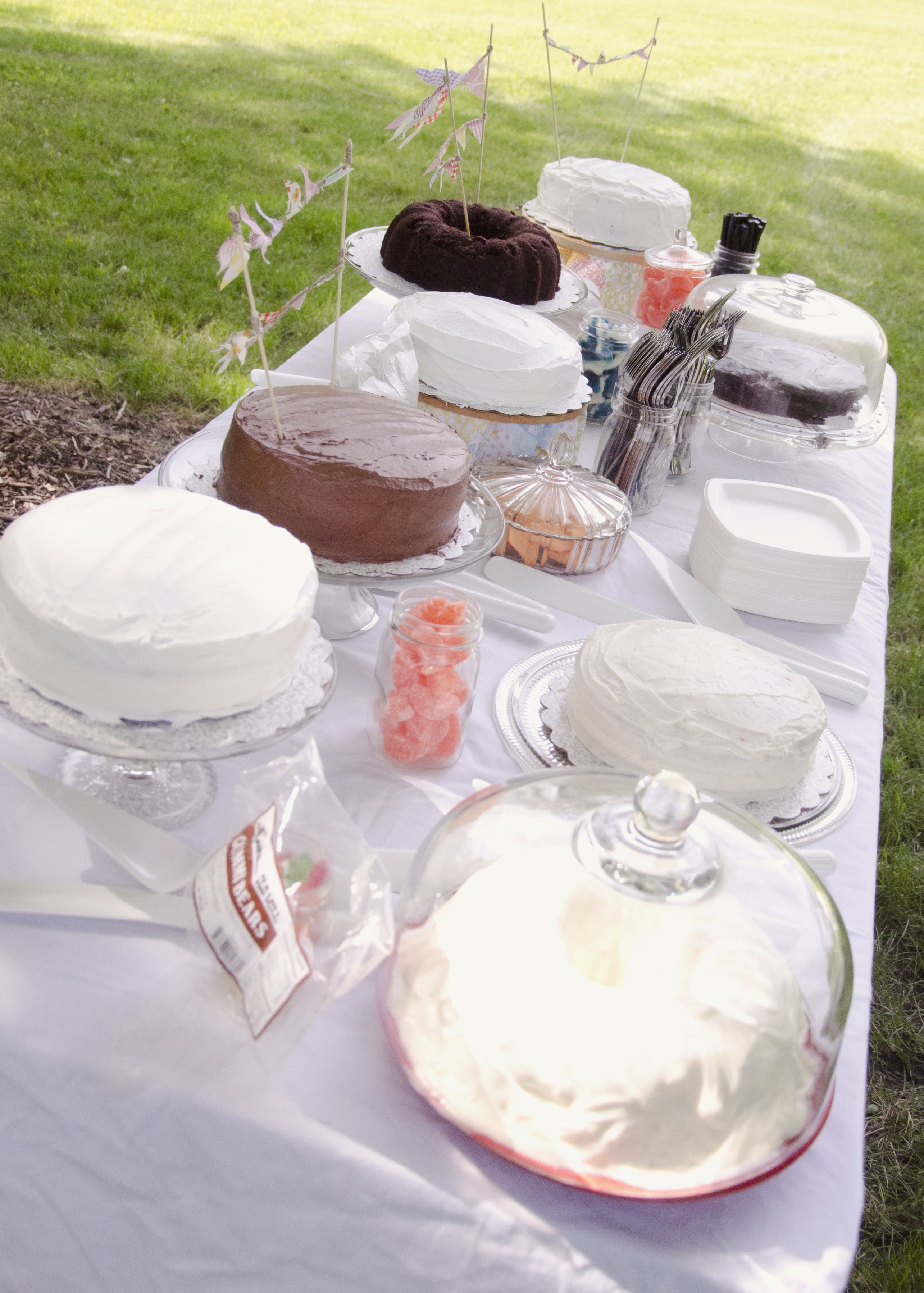 Cakes Made With Love: Our DIY Wedding Cake Table – MPLS MAMA BEAR