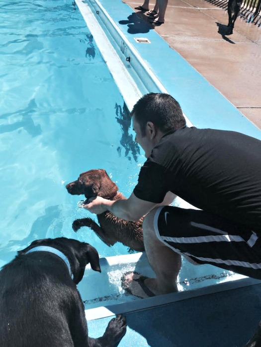 lowering pippa into the water